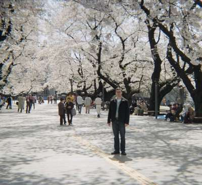 Benjamin Jacobs arriving at Tokyo Institute of Technology during cherry blossom season.