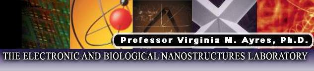 Page Header Image for Dr. Virginia M. Ayres, The Electronic and Biological Nanostructures Laboratory